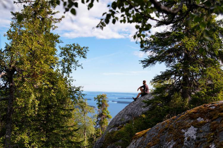 Koli National Park en North Karelia. Lakeland. Finlandia.